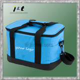 large thermal/cooler bag for delivery service